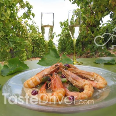 shrimps-wines-nemea-2