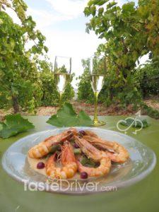 shrimps-wines-nemea