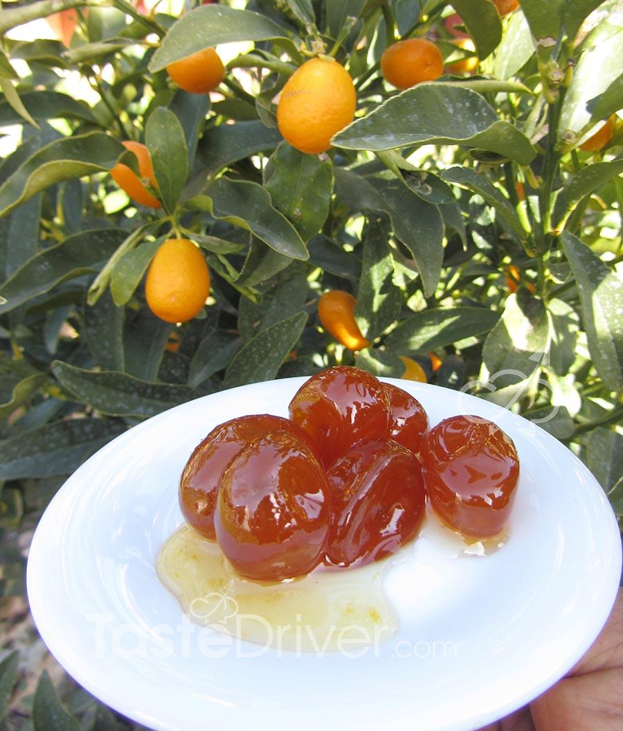 sweet-cumquat