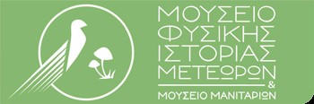 mouseio_meteora