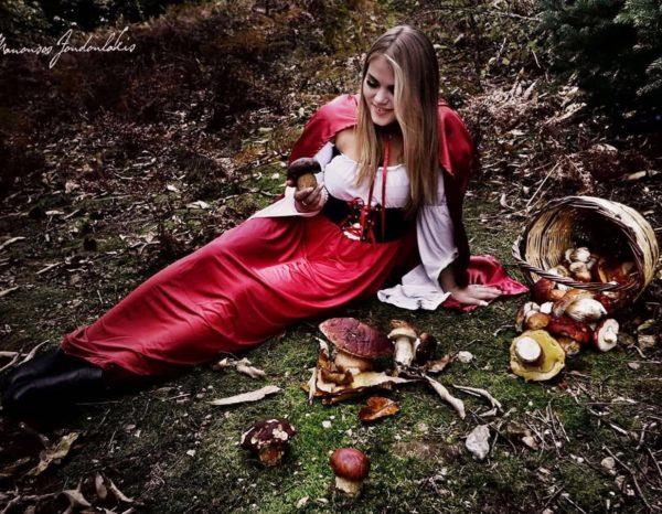 μανιτάρια, δίρφυς, κοκκινοσκουφίτσα, δάσος