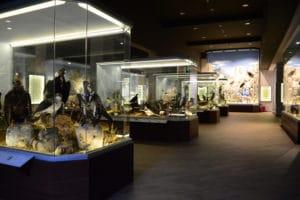 εσωτερικός, χώρος, μουσείου
