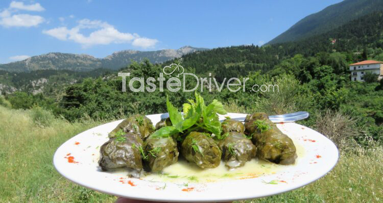 Dolmades with vine leaves